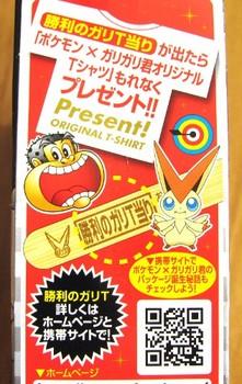 ポケモン映画コラボ ガリガリ君リッチ チョコチョコ1.JPG